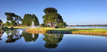 Auckland Branch Event - Golf Tournament