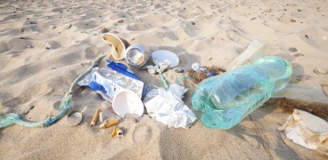 Litter & Marine Waste